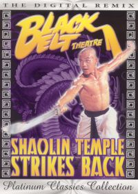 Shaolin Temple Strikes Back