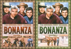 Bonanza: The Outcast