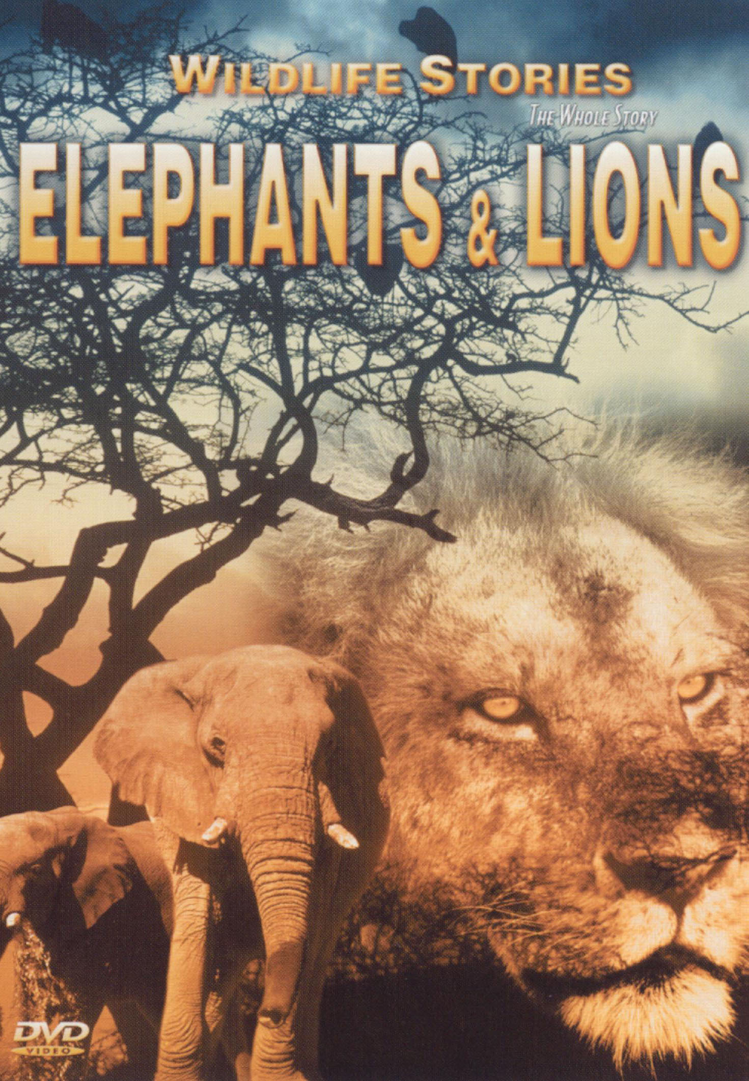 Wildlife Stories: The Whole Story - Elephants and Lions