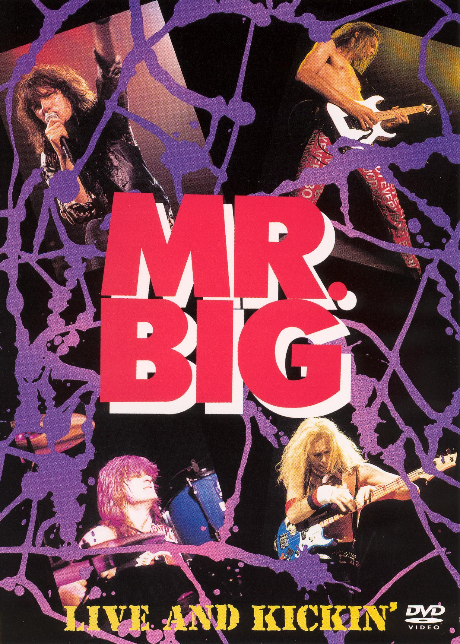 Mr. Big: Live and Kickin'
