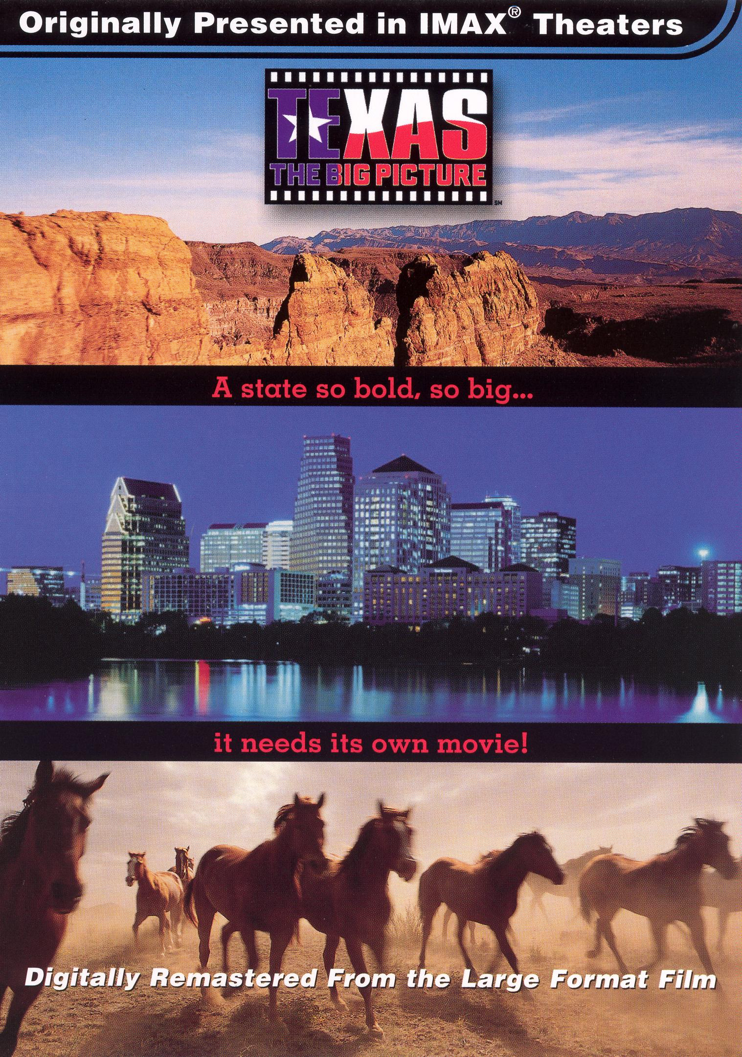 Texas: The Big Picture