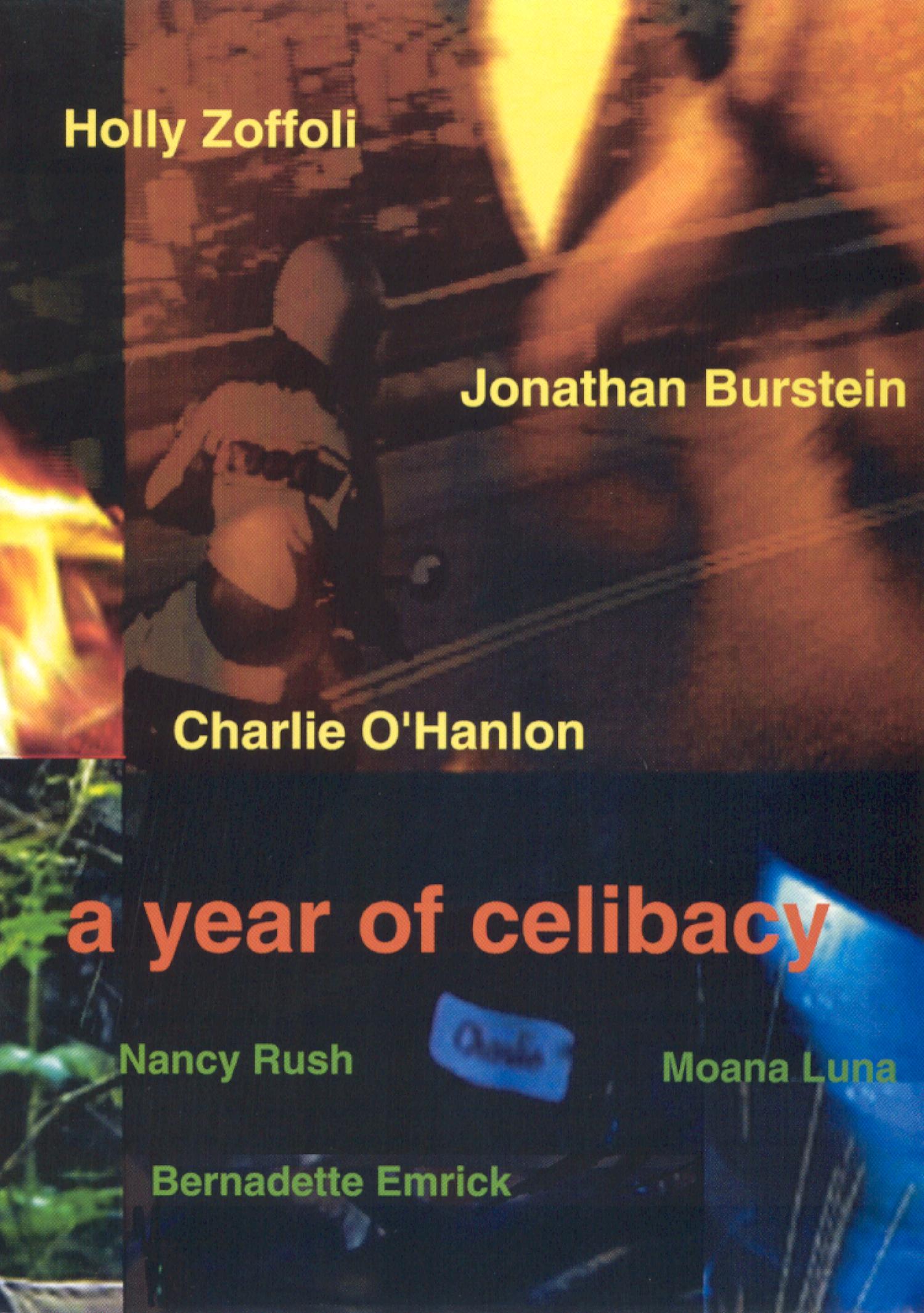 A Year of Celibacy