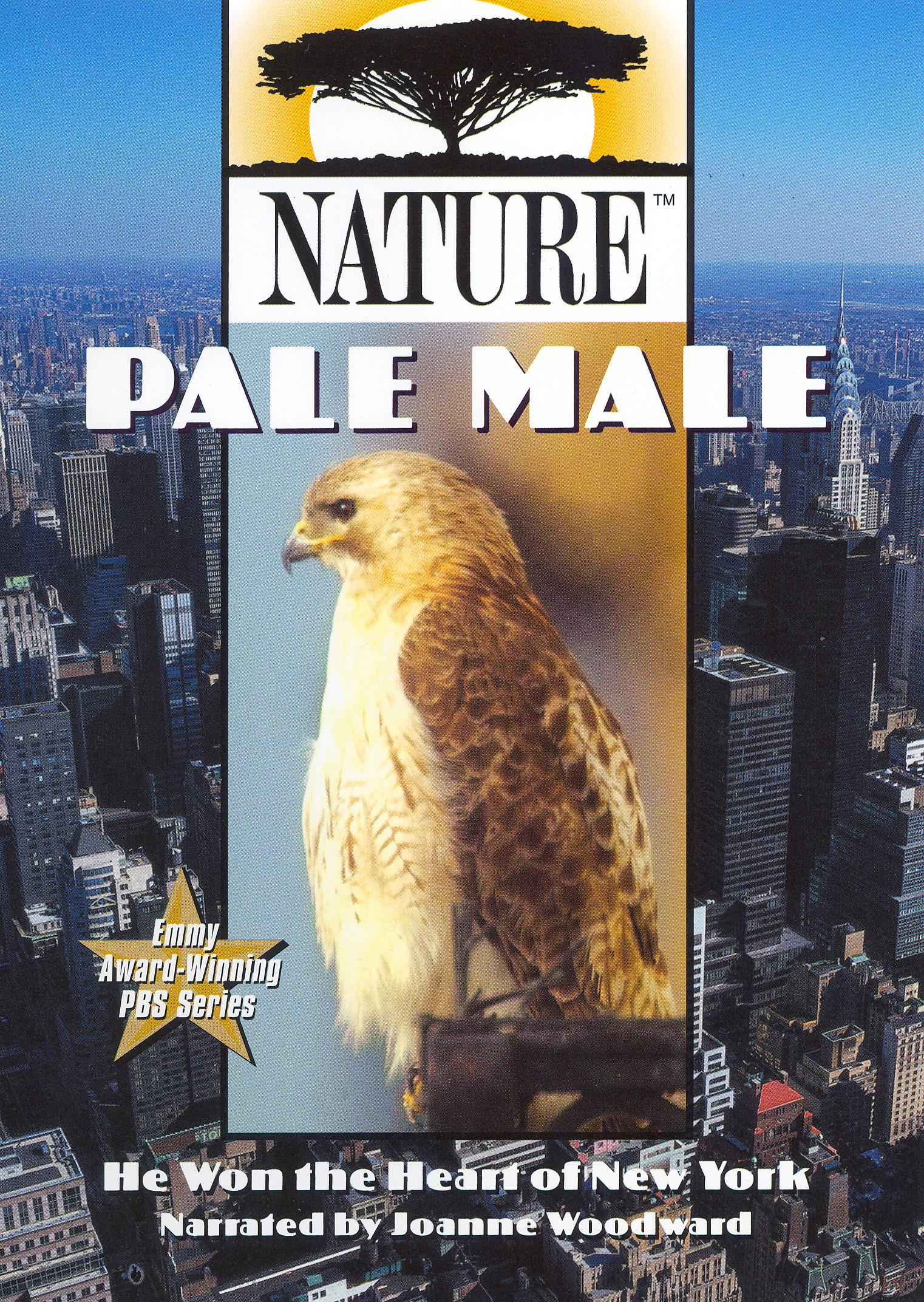 Nature: Pale Male