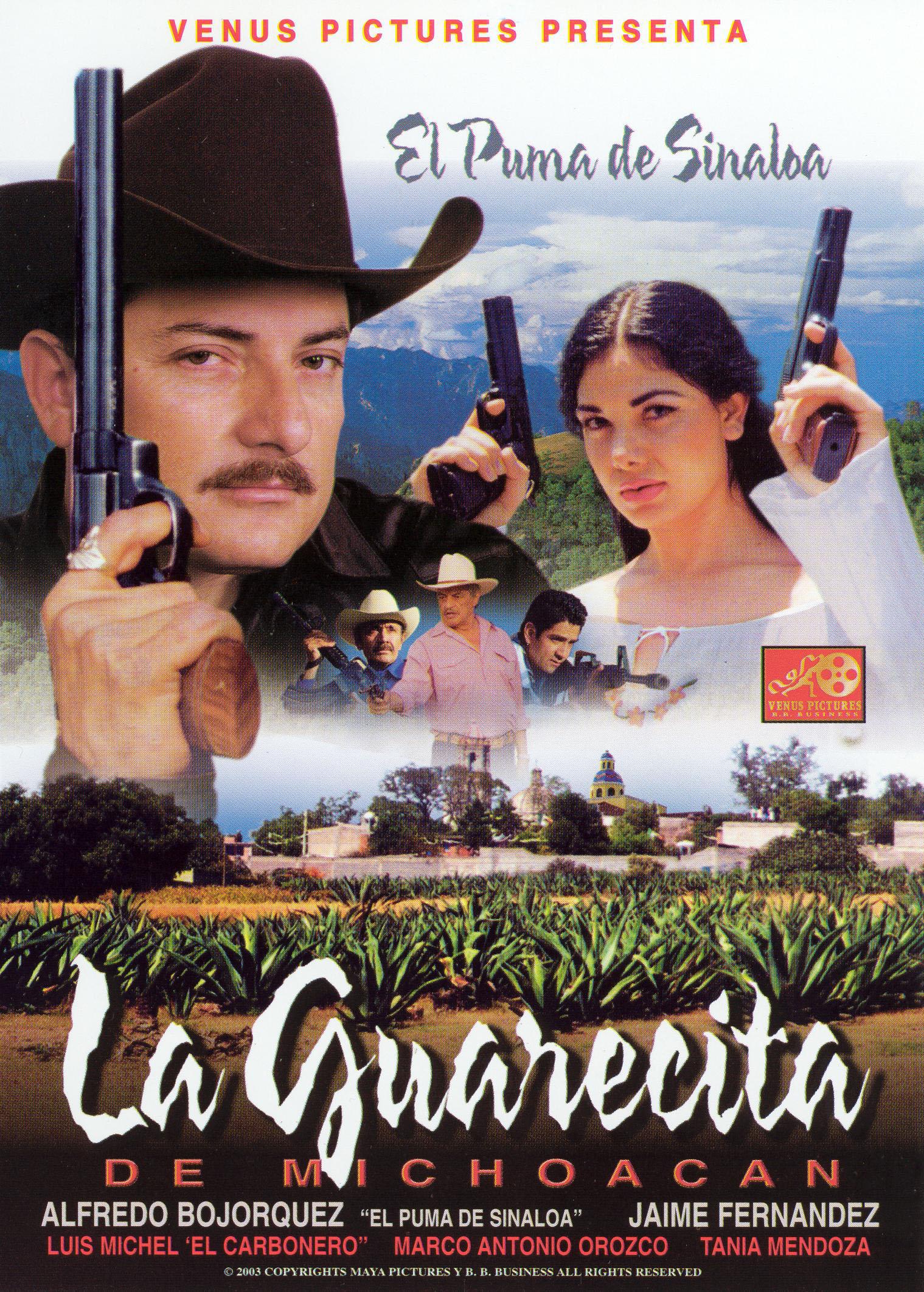 La Guarecita de Michoacan