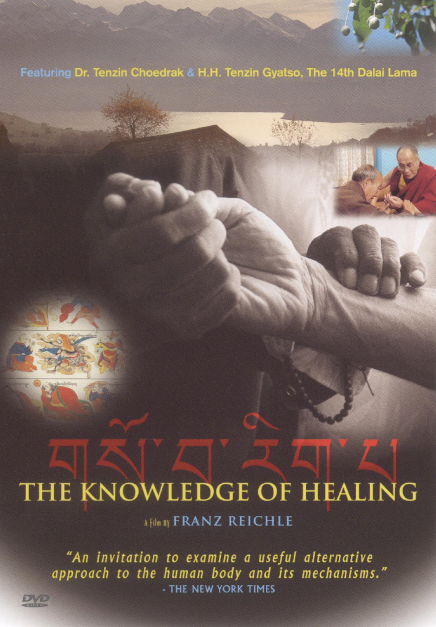 Das Wissen Vom Heilen