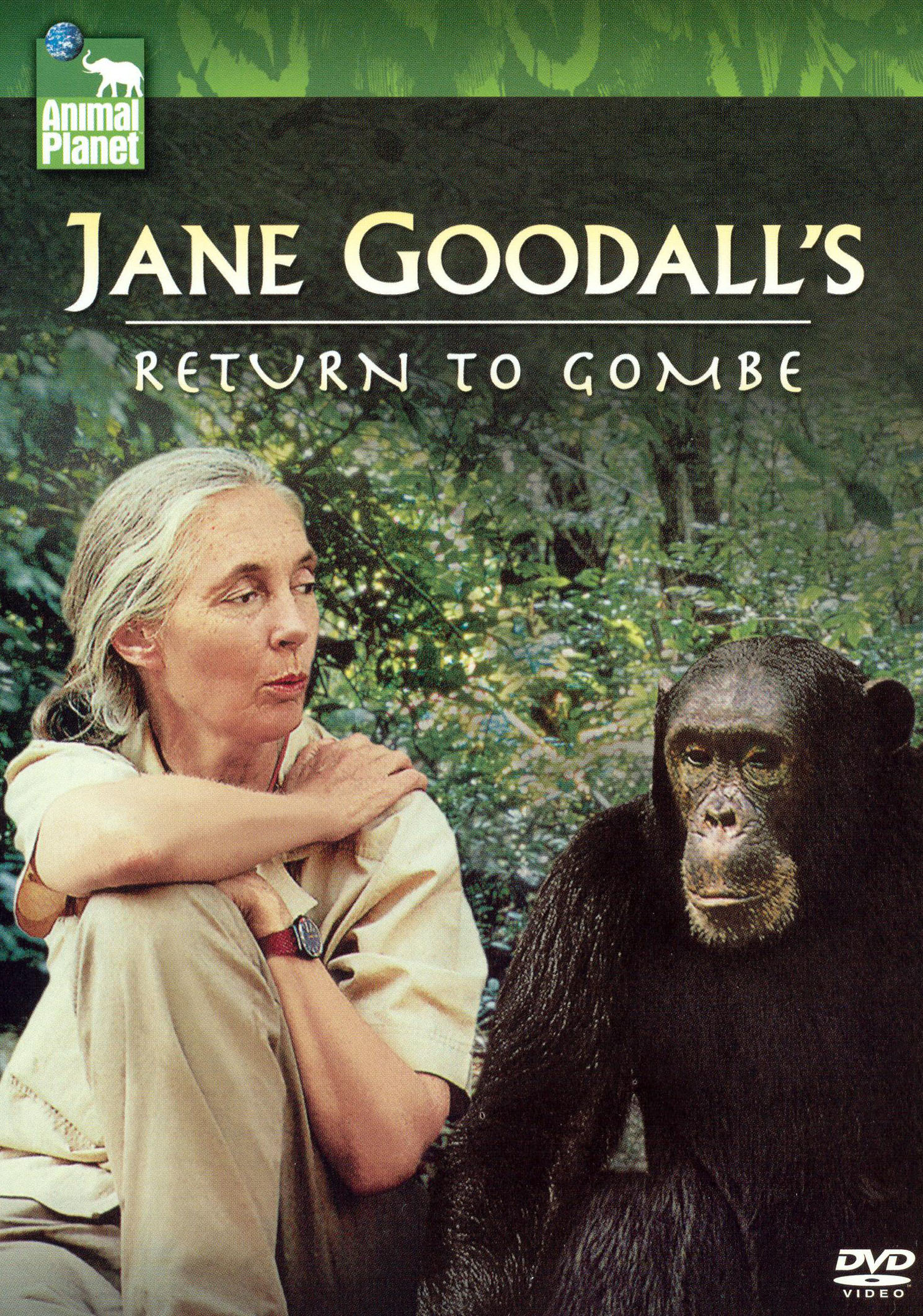 Jane Goodall's Return to Gombe
