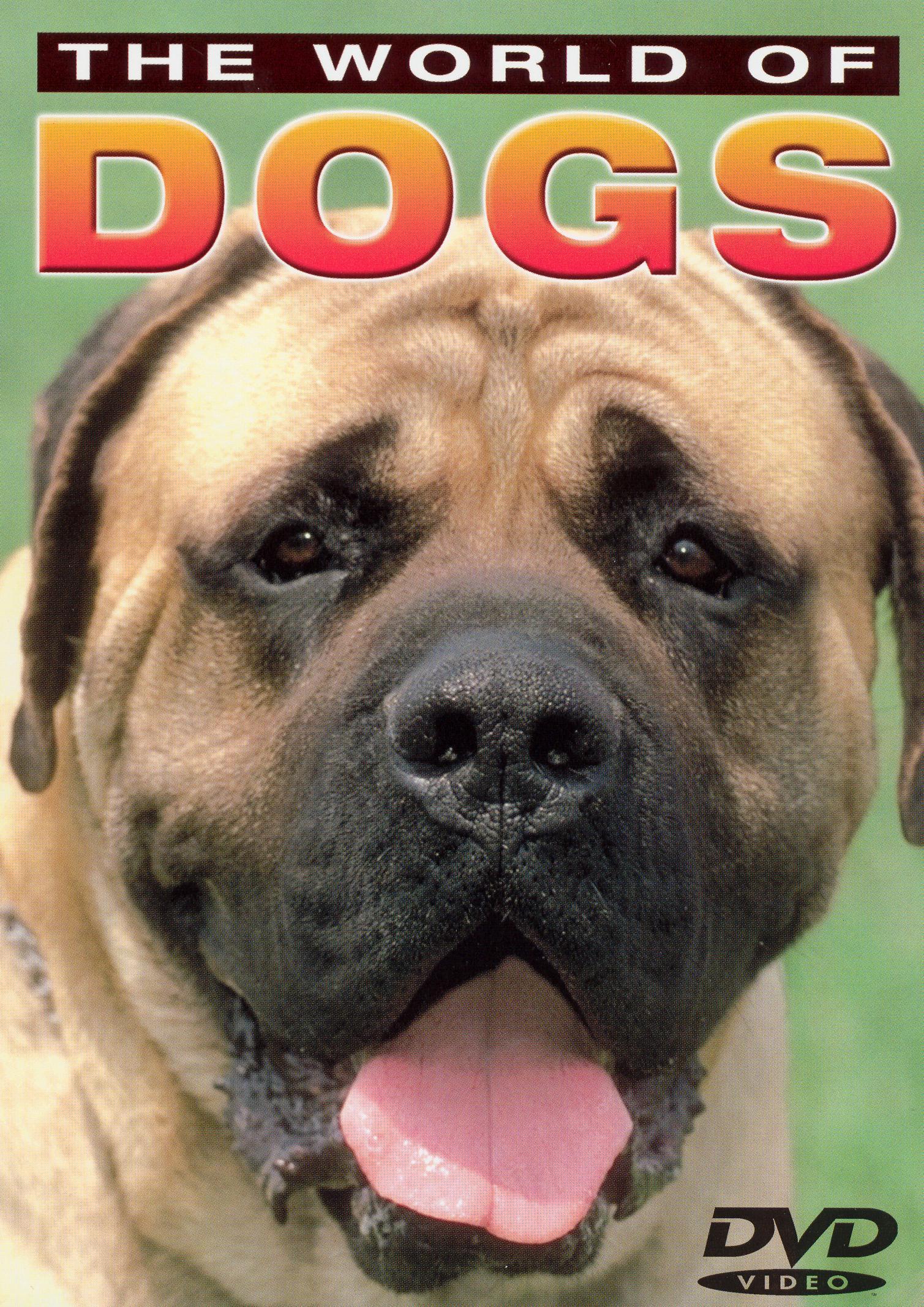 World of Dogs: Basic Dog Training