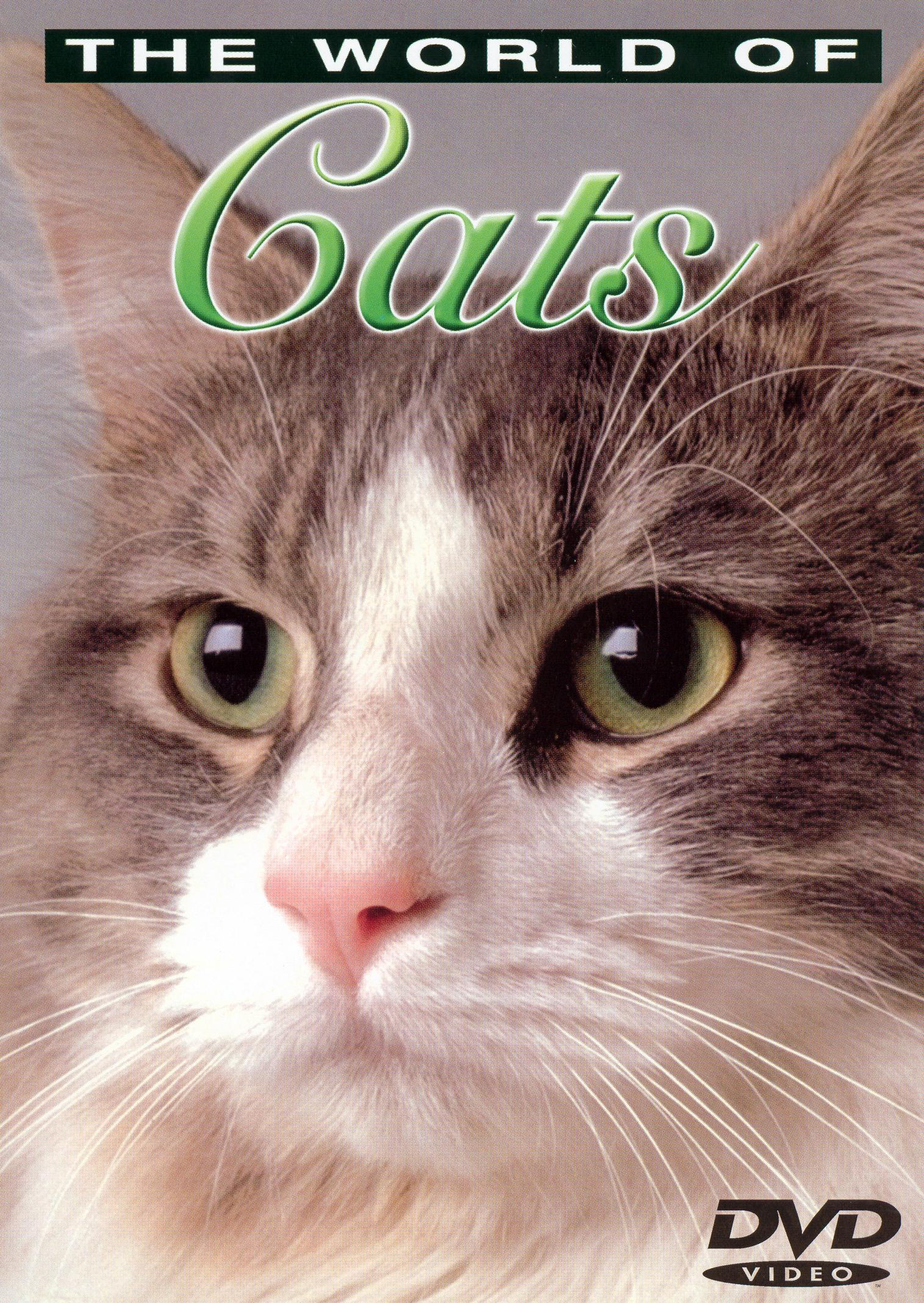The World of Cats, Vol. 2: Understanding Your Cat