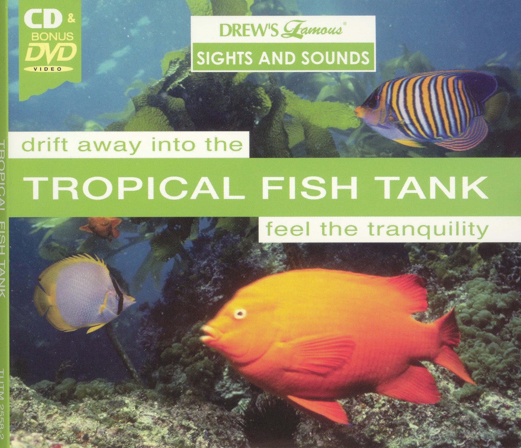Drew's Famous Sights & Sounds: Tropical Fish Tank