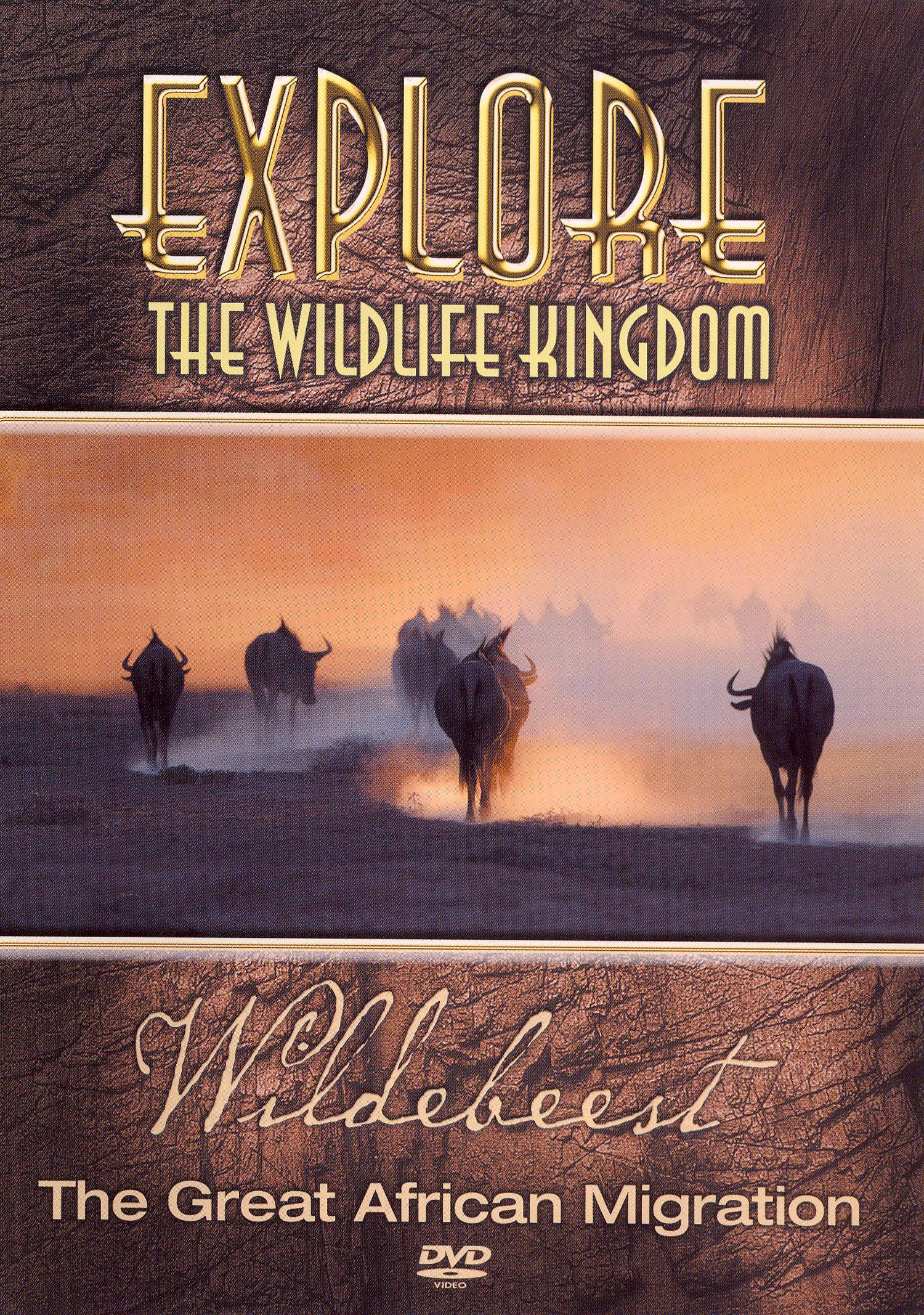 Explore the Wildlife Kingdom: Wildebeest - The Great African Migration