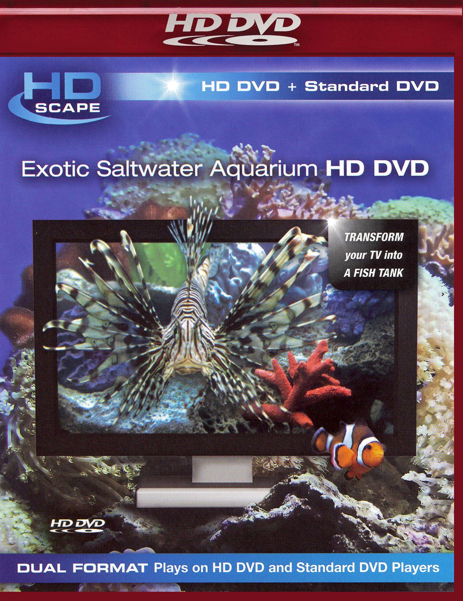 Exotic Saltwater Aquarium