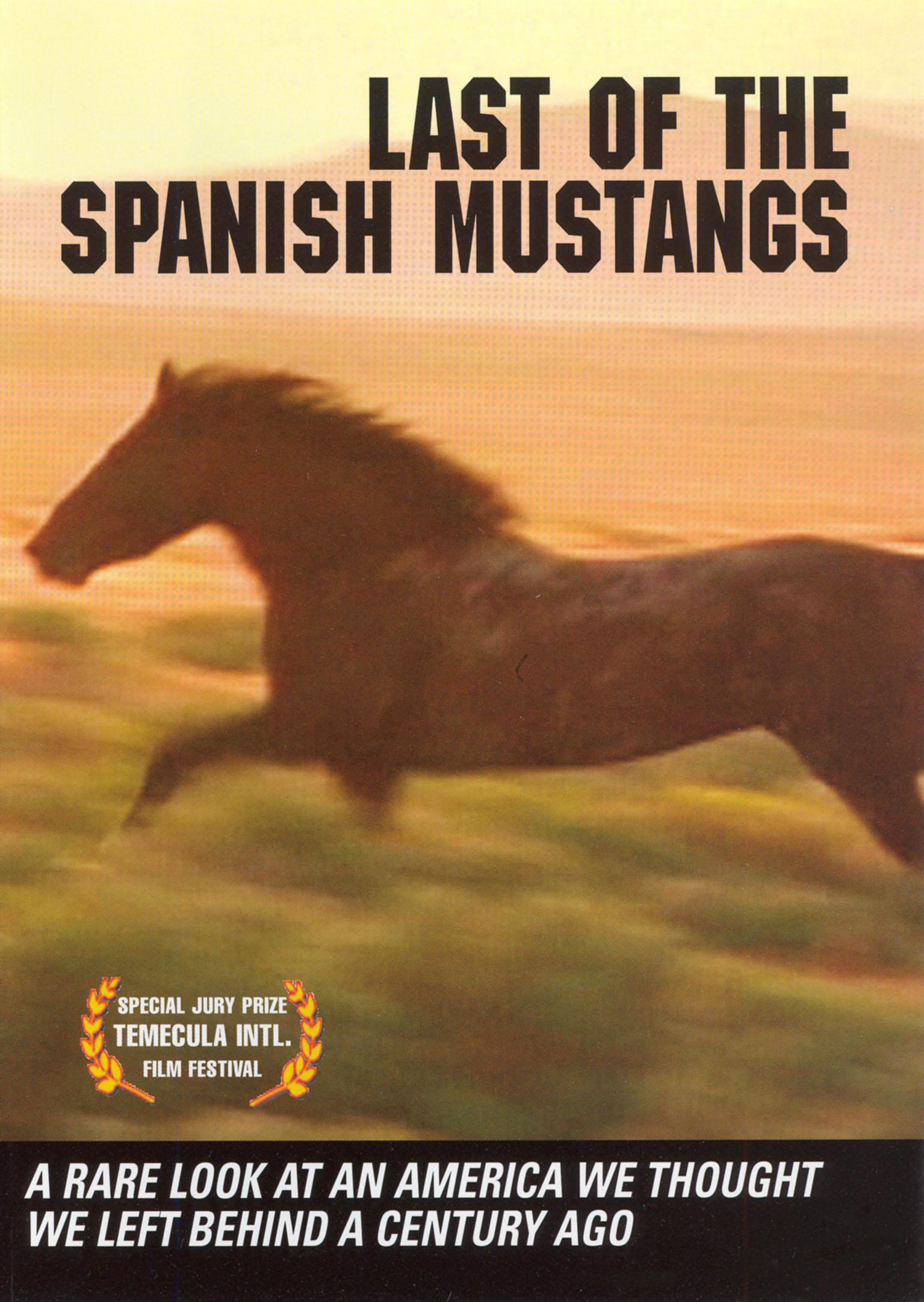 Last of the Spanish Mustangs