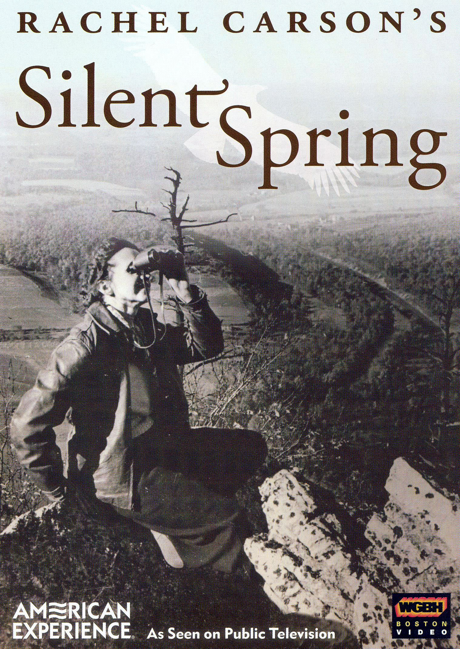 silent spring essay Topic: silent spring paper details: rachel carson has been called the founder of the us environmental movement after you have read chapters 1 - 3 in her groundbreaking book silent spring, prepare a fully cited essay of 2-3 pages summarizing the issues she was bringing to light and their importance to the field of.