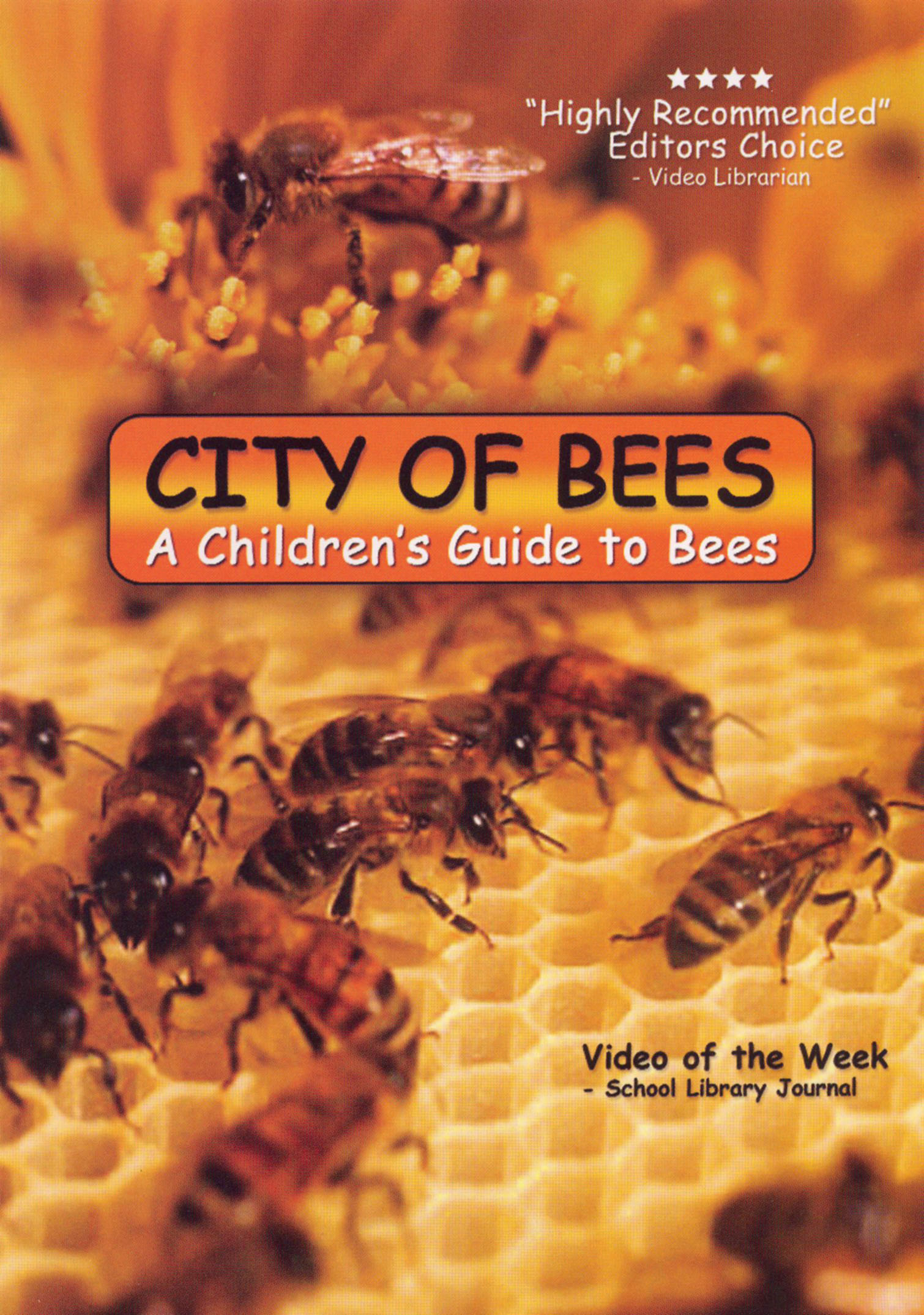 The City of Bees