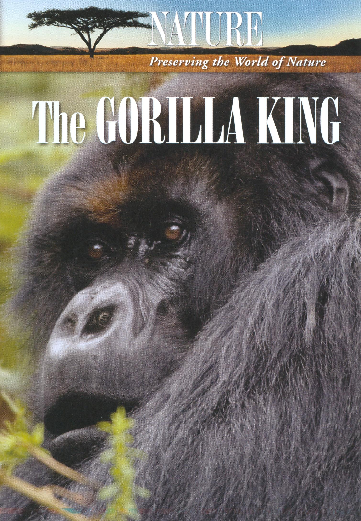 Nature: The Gorilla King