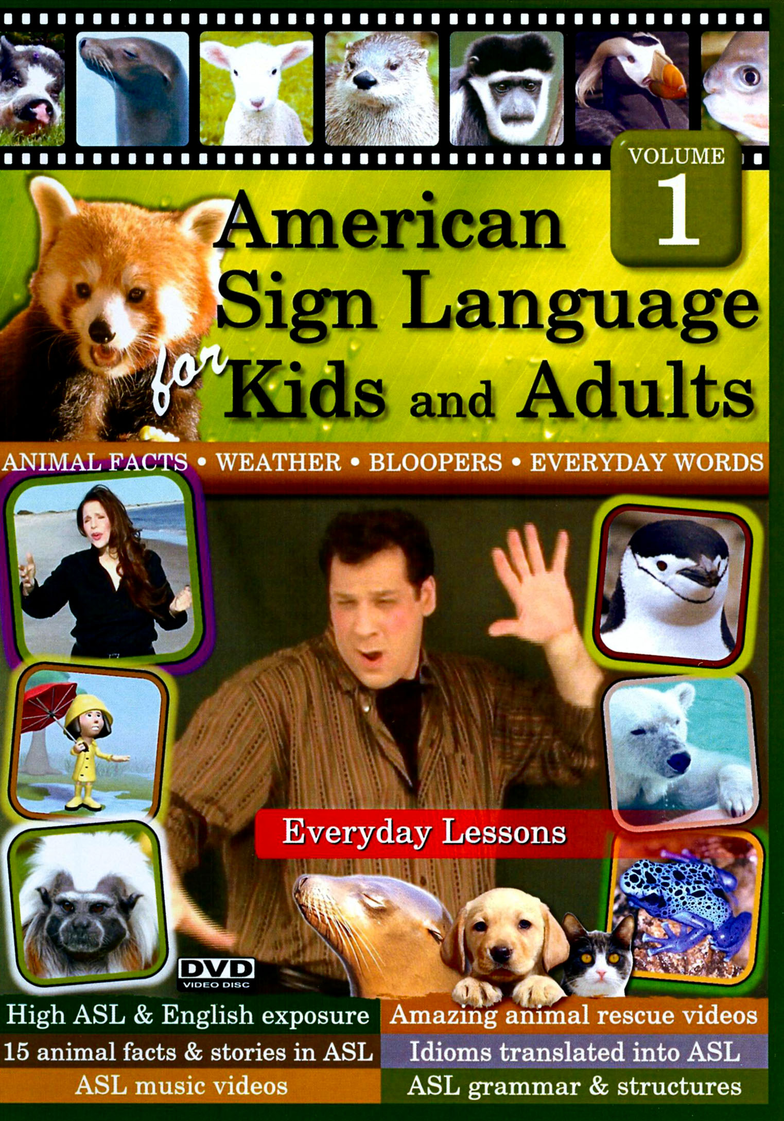 Best sign language dvd for adults