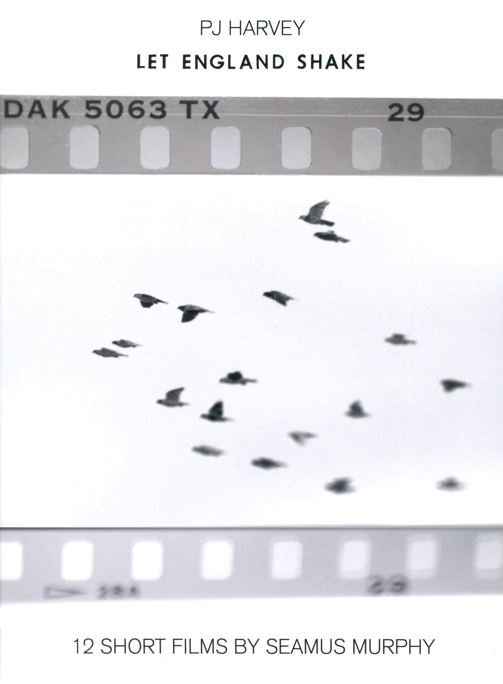 PJ Harvey: Let England Shake - 12 Short Films by Seamus Murphy