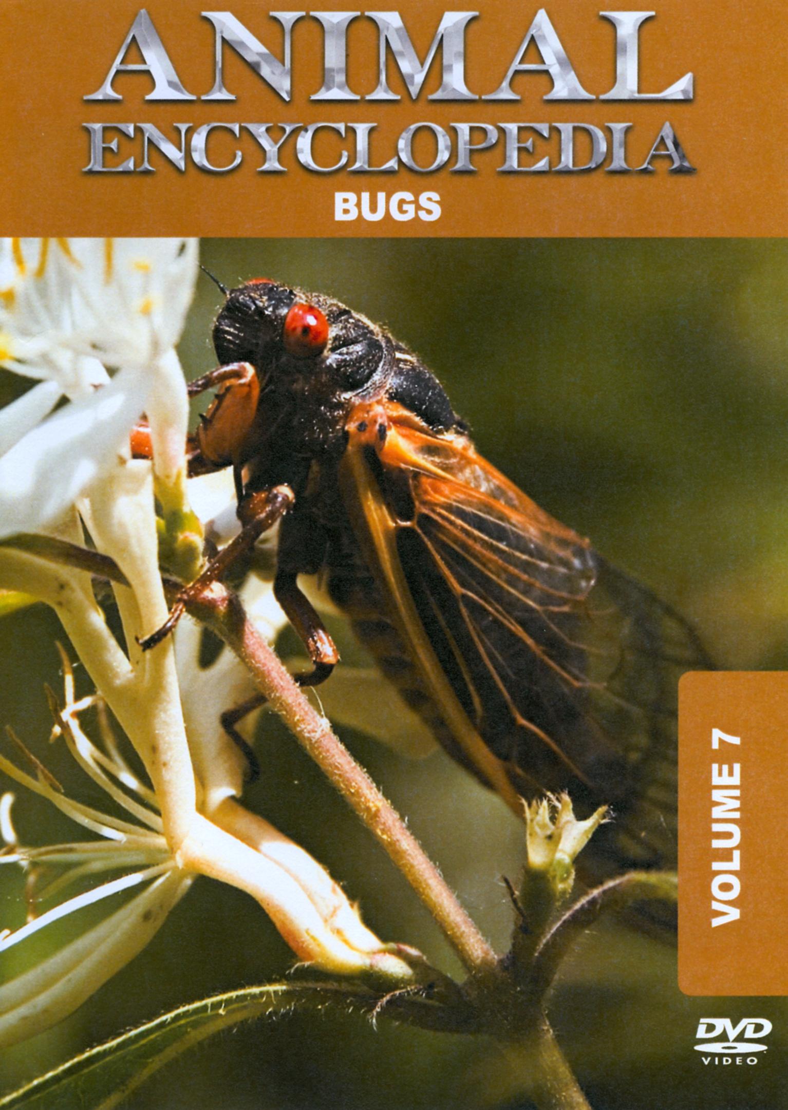 Animal Encyclopedia, Vol. 7: Bugs