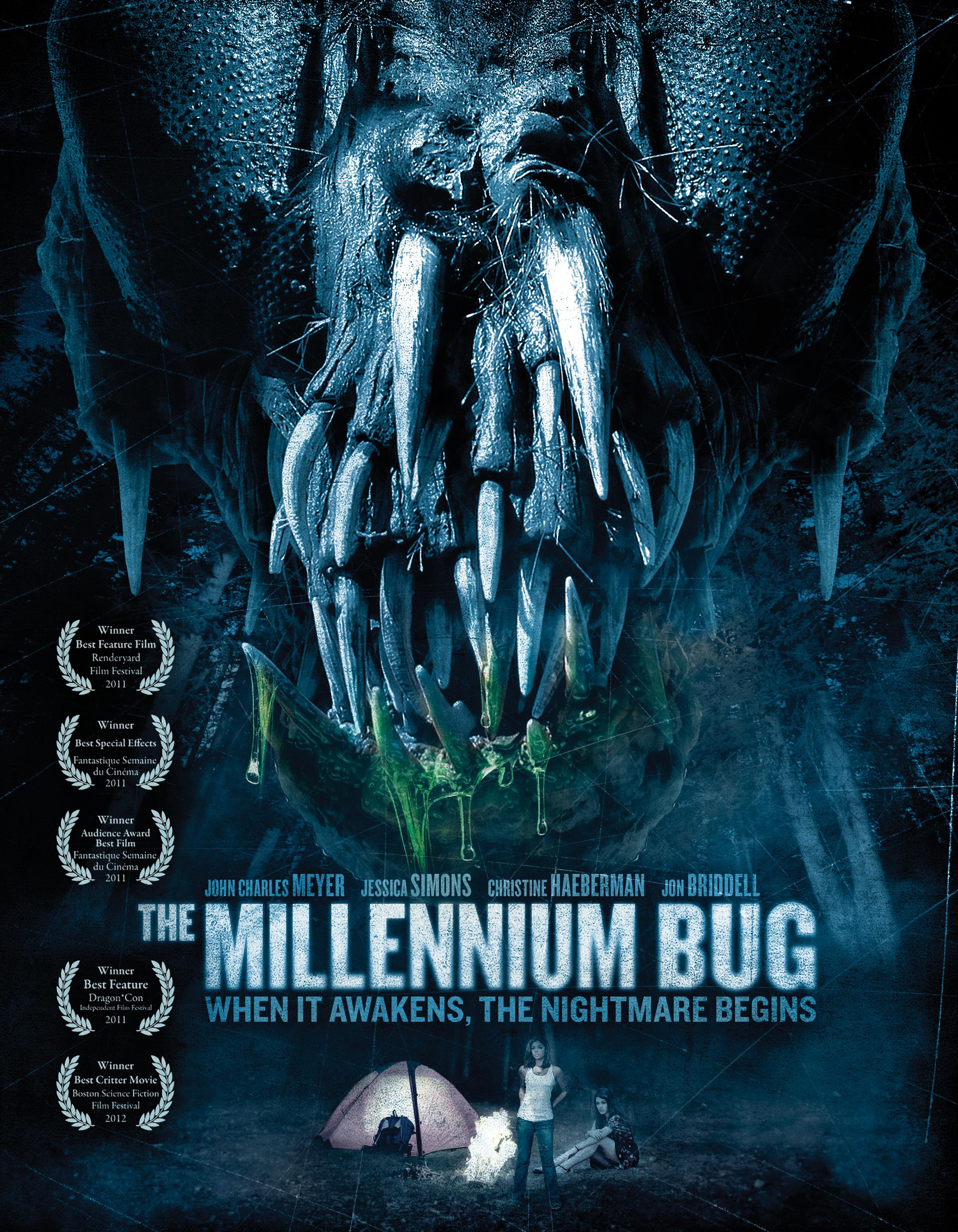 The Millennium Bug
