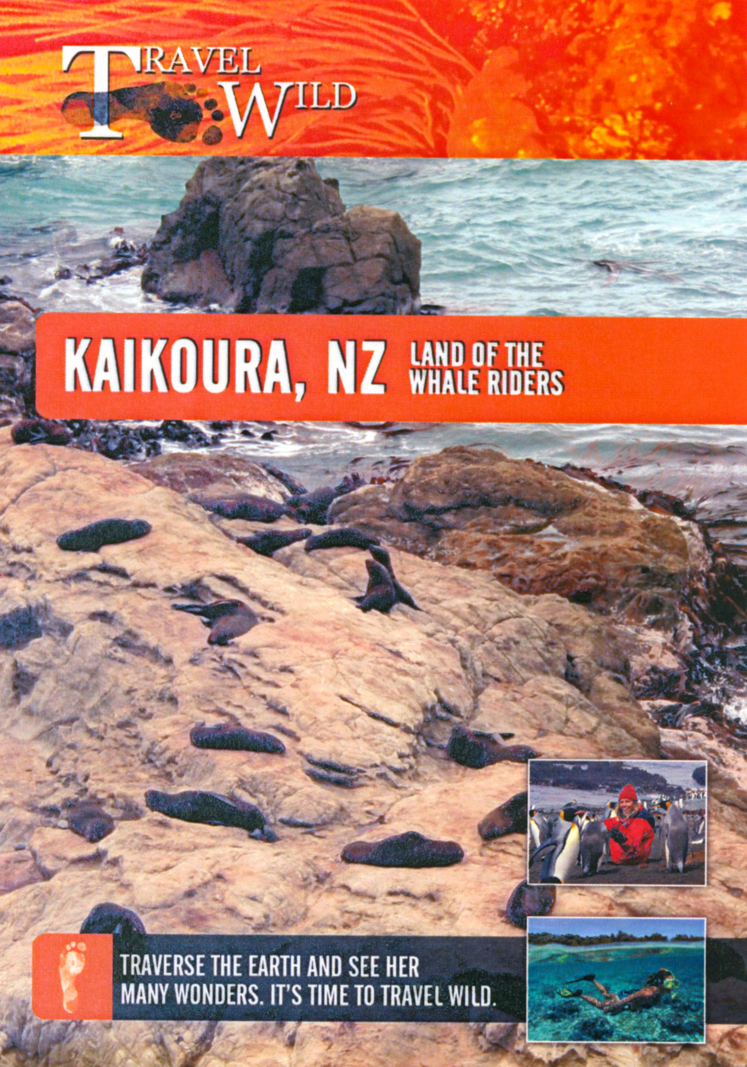 Travel Wild: Kaikoura, NZ - Land of the Whale Riders