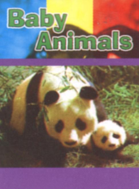 Sing-A-Long Favorites: Baby Animals