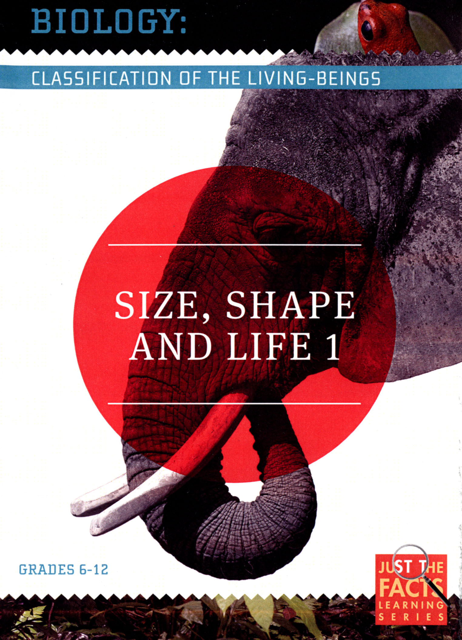 Biology Classification: Size, Shape and Life, Vol. 1