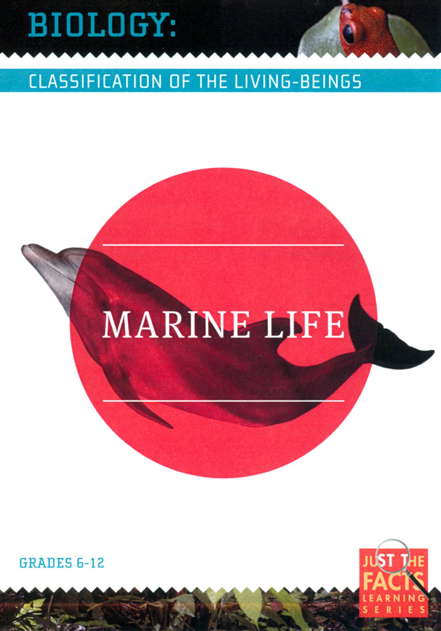 Biology Classification: Marine Life