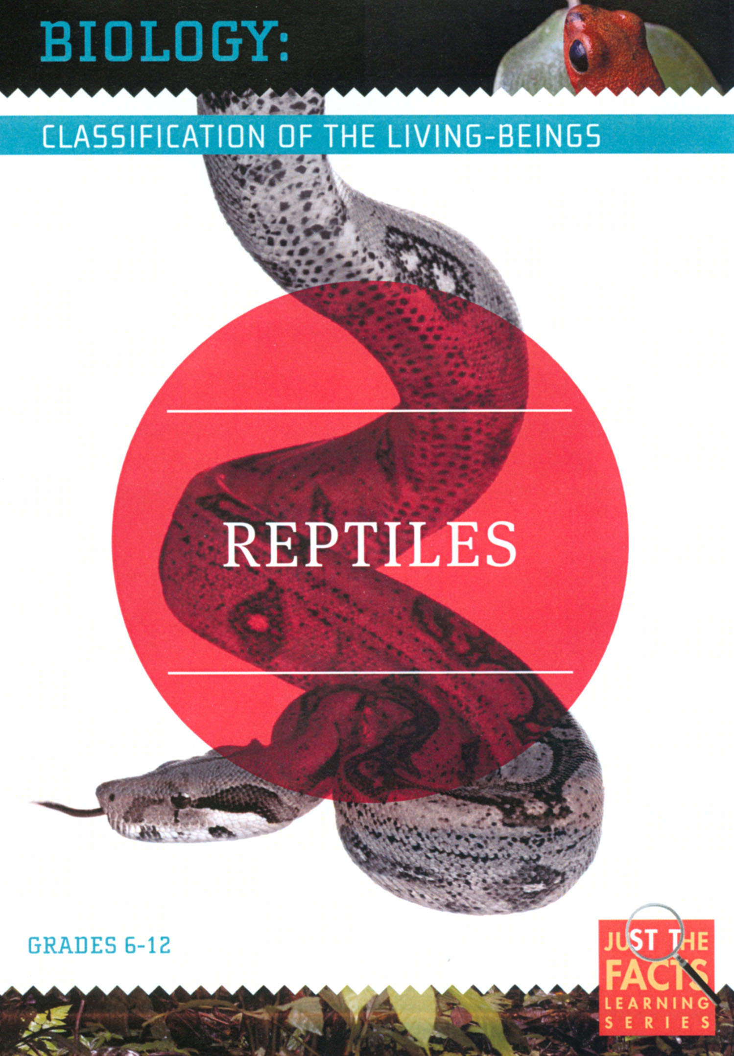 Biology Classification: Reptiles