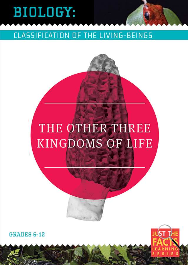 Biology Classification: The Other Three Kingdoms of Life