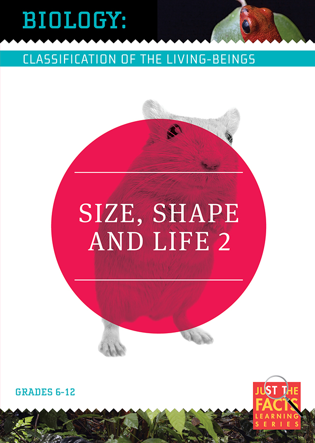Biology Classification: Size, Shape and Life, Vol. 2