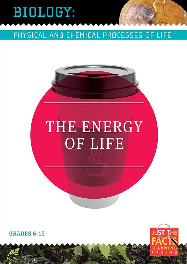 Biology Basics: The Energy of Life