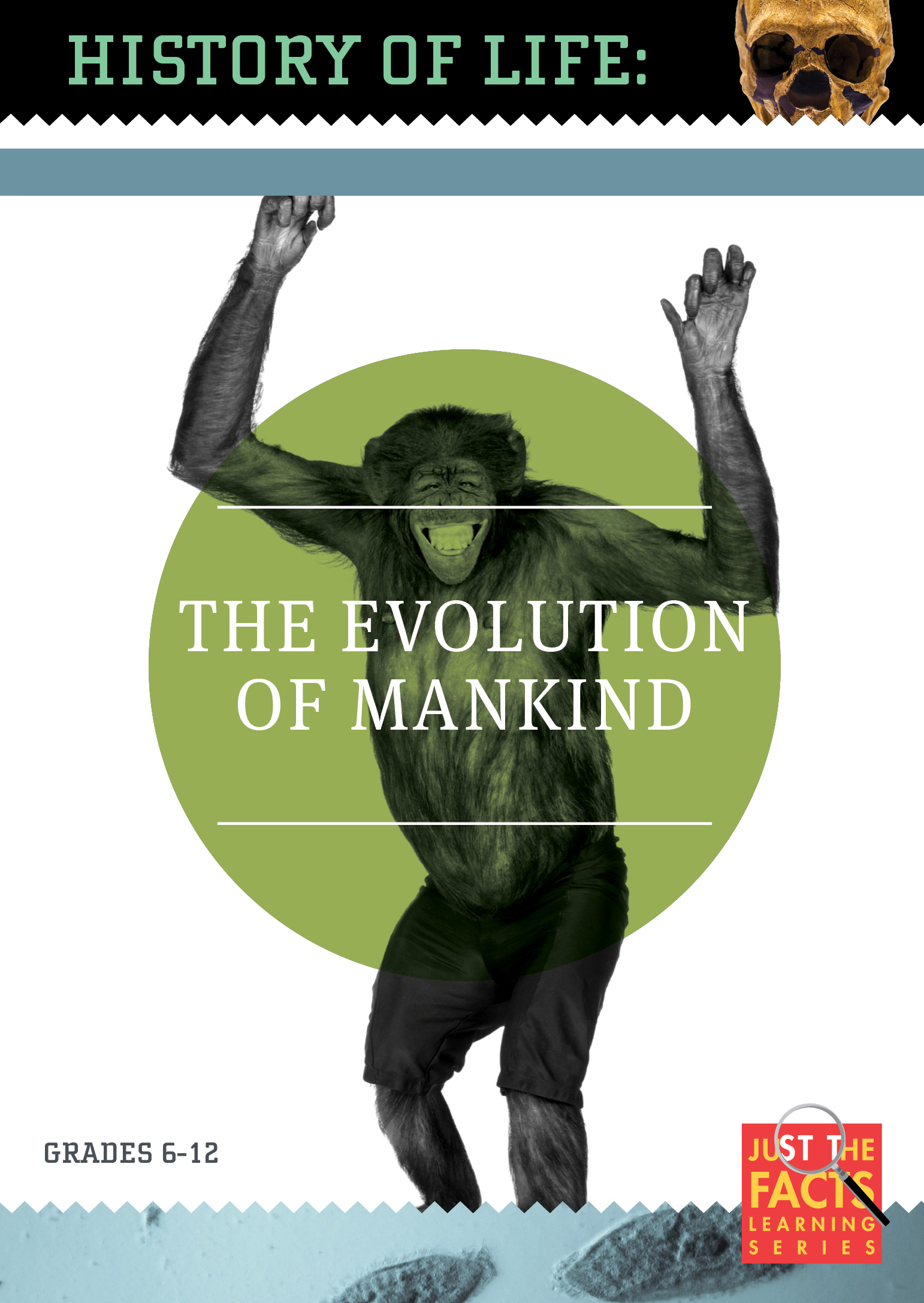 History of Life: The Evolution of Mankind