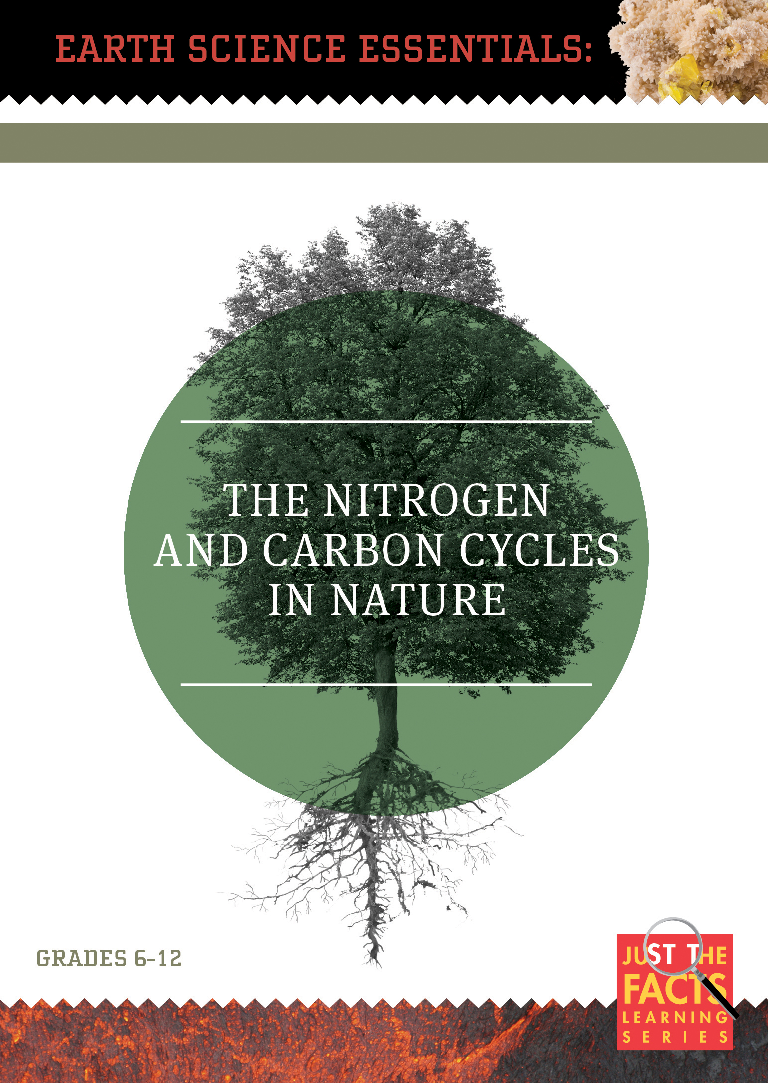 Earth Science Essentials: Nitrogen and Carbon Cycles