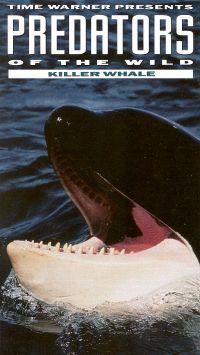 Predators of the Wild: Killer Whale