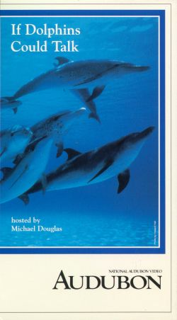 Audubon Video: If Dolphins Could Talk