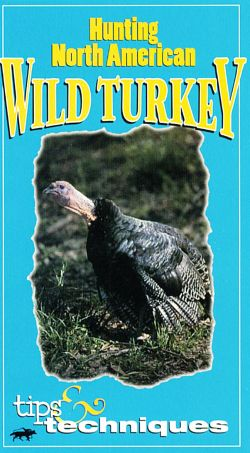 Tips & Techniques: Hunting North American Wild Turkey