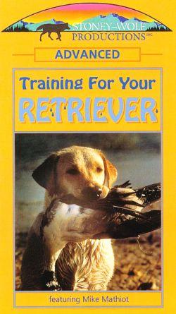 Training Your Retriever: Advanced