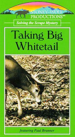 Taking Big Whitetail: Scrape Mystery