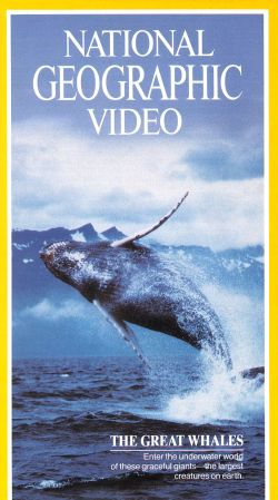 National Geographic: Great Whales