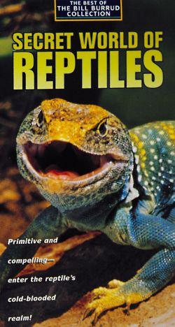 The Secret World of Reptiles