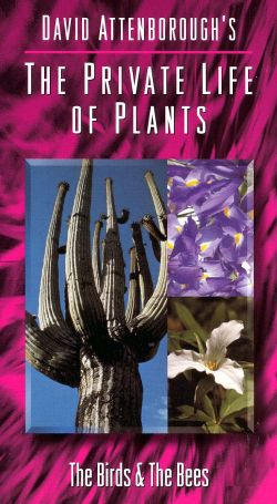David Attenborough's The Private Life of Plants: Birds & Bees