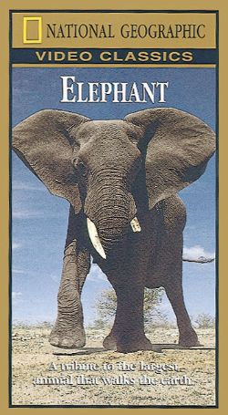 National Geographic: Elephant