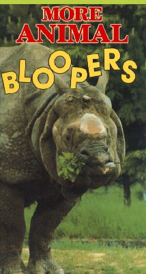 More Animal Bloopers
