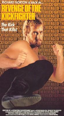 Revenge of the Kickfighter