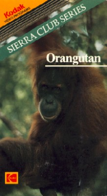 Sierra Club Series: Orangutan
