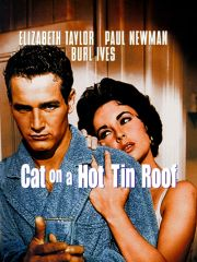 Tcm Butterfield 8 / Cat On A Hot Tin Roof - Elizabeth Taylor (DVD) UPC: 883929357611