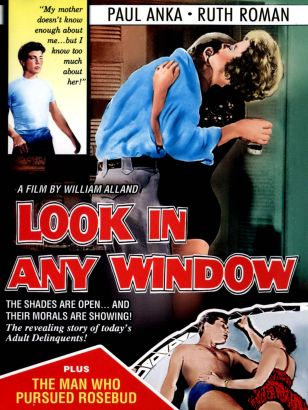 Look in Any Window
