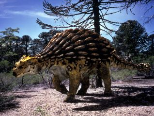 Walking With Dinosaurs [TV Documentary Series]