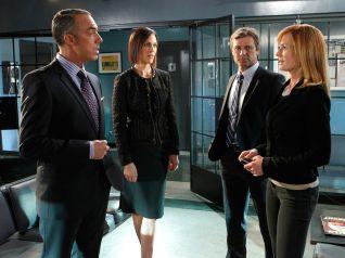 CSI: Crime Scene Investigation: Zippered