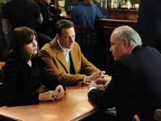 The Good Wife: Gloves Come Off